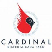logo-cardinal